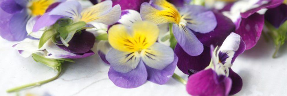 Edible Flowers & Garnishes